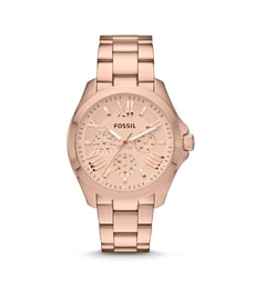 Hodinky Fossil Cecile AM4511