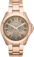Hodinky Fossil Cecile AM4533