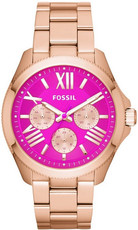 Hodinky Fossil Cecile AM4549